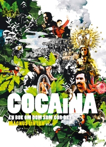 cocaina-hogupplost